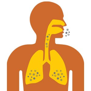 Indoor air contaminants can lodge into the lungs, triggering an asthma attack